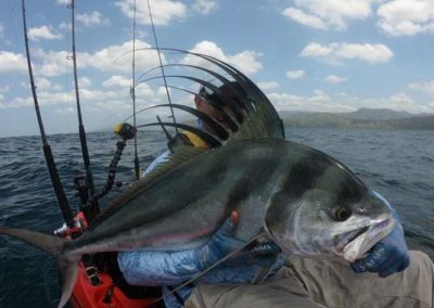 roosterfish from kayak at Los Buzos (16)