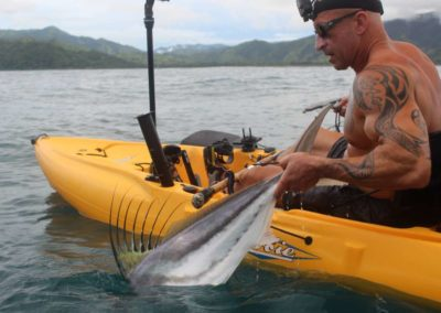 roosterfish from kayak at Los Buzos (29)