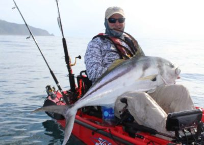 roosterfish from kayak at Los Buzos (51)