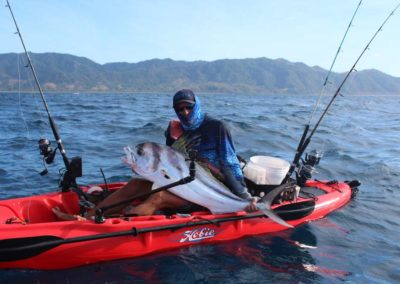 roosterfish from kayak at Los Buzos (66)