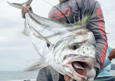 Los Buzos Panama Kayak Fishing November 9-15 2019 week (2)